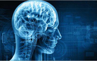 Cognitive Decline Alzheimer's Dementia